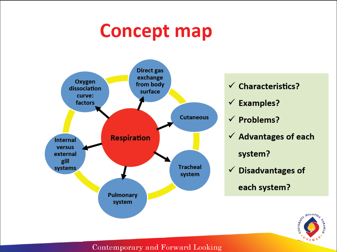 Animal Physiology Part 3 Reflection Concept Map